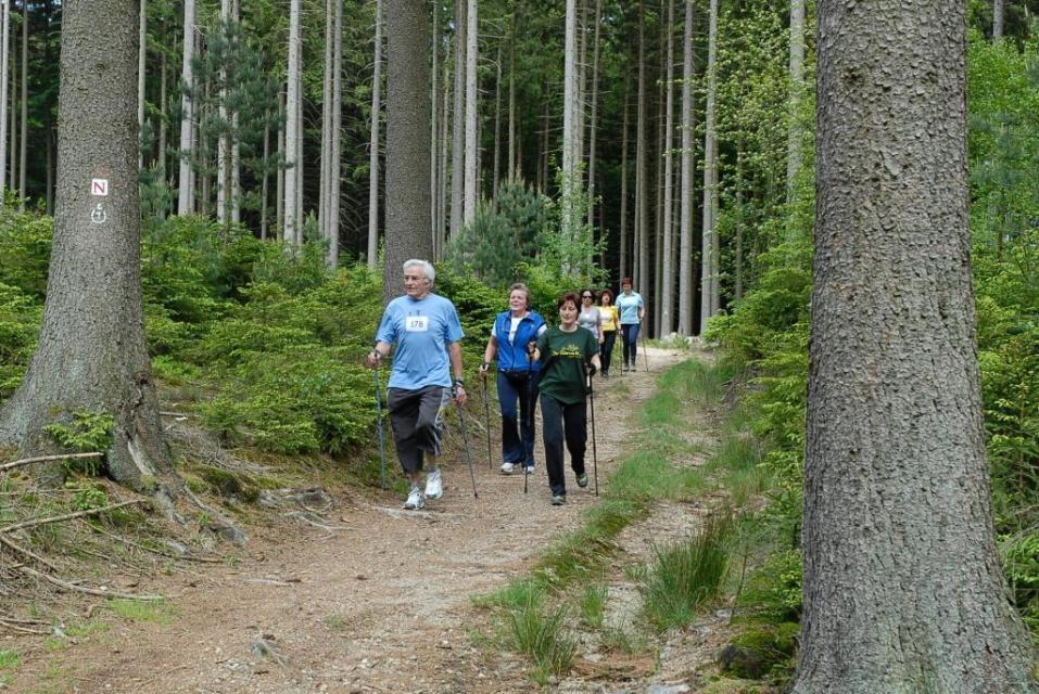 Nordic Walking Tour - Durchs Gassbachtal und rund um den Hammelberg