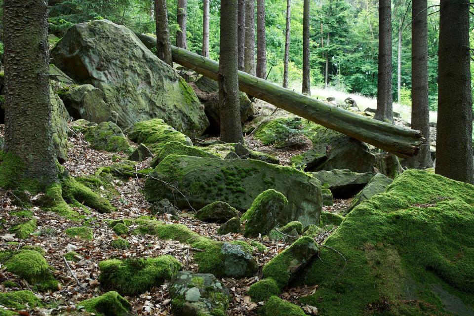 Höhendorf-Wanderung