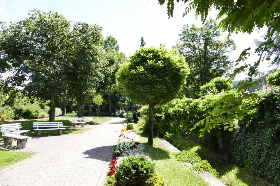 Nordic Walking Tour 8 - Von Zell ins Brombachtal