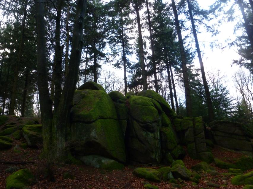 Steine, Schluchten und Sagen 2 - Weinheimer Schleife