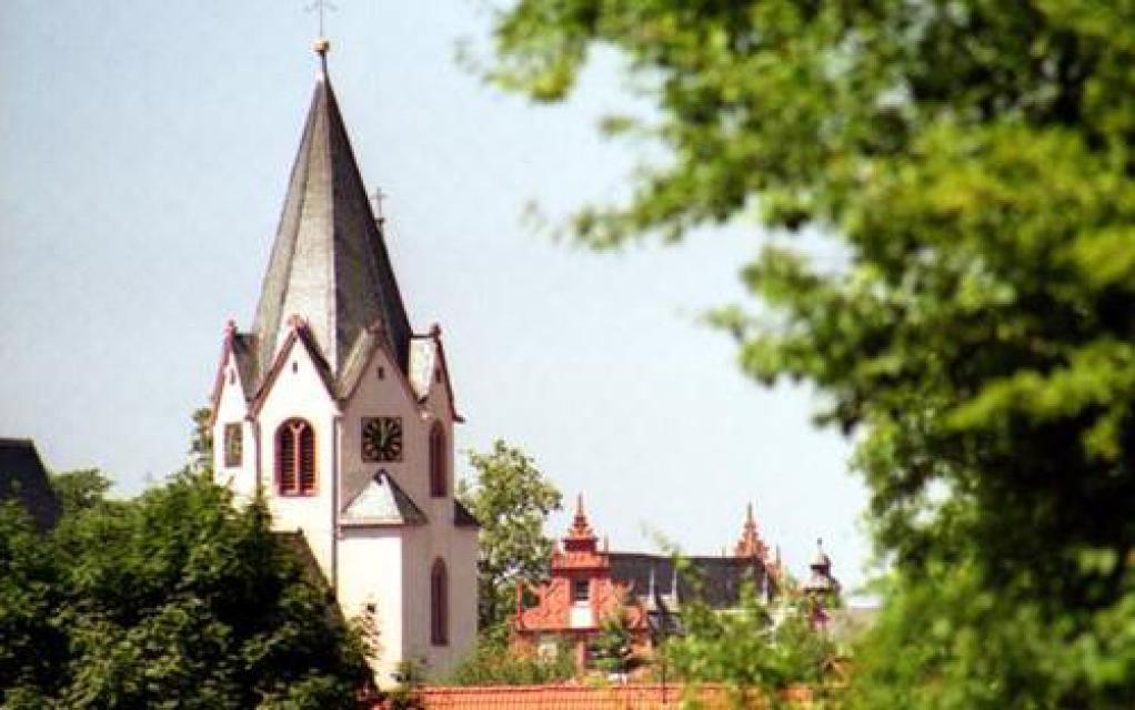 Reinheimer Bucht-Radweg - Sanfte Hügel und herrschaftliche Bauten