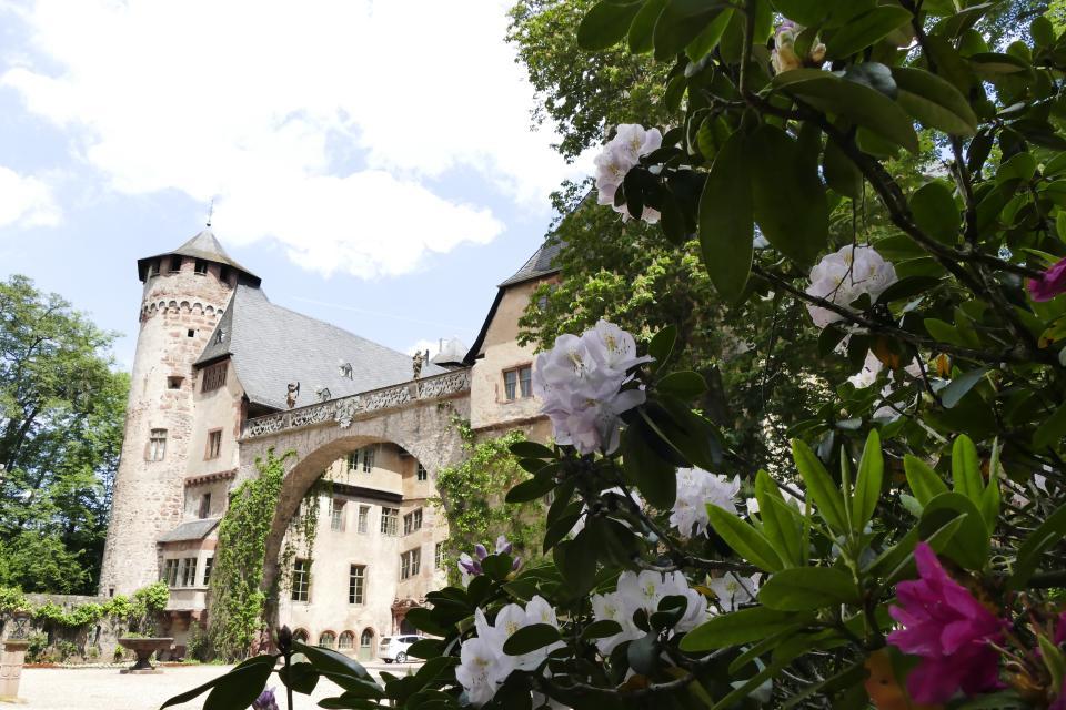 - Odenwald Tourismus GmbH