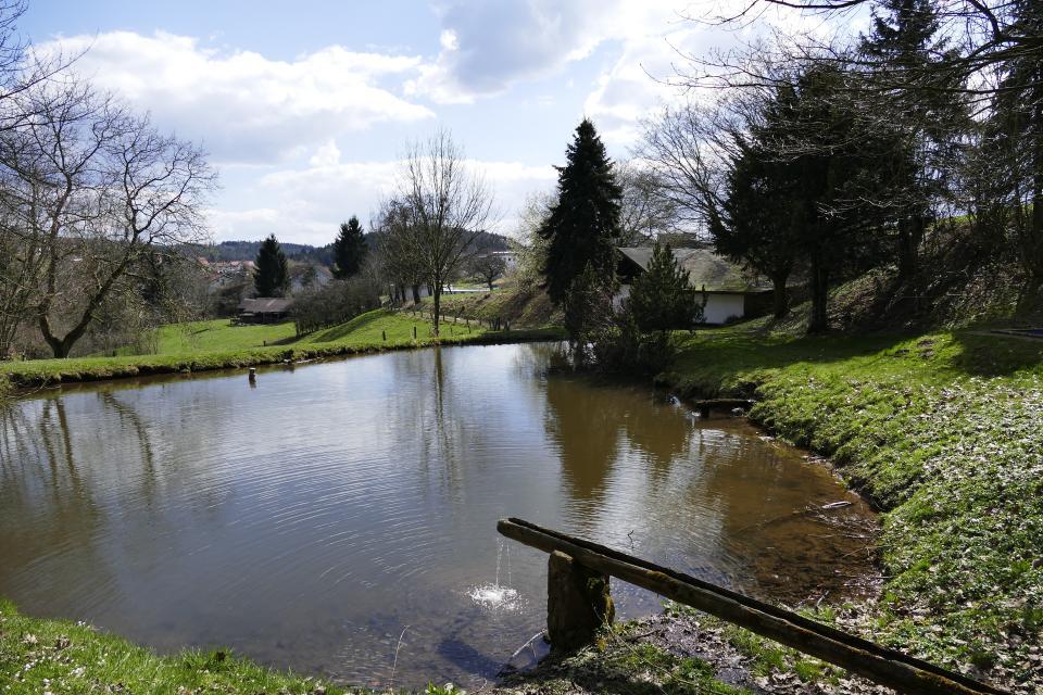 Quellenweg Hammelbach