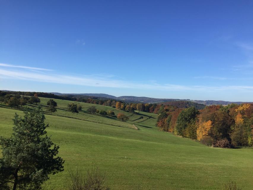 Nordic Walking Tour 11 - Von der Momarter Eiche um die Pfaffenwiesen