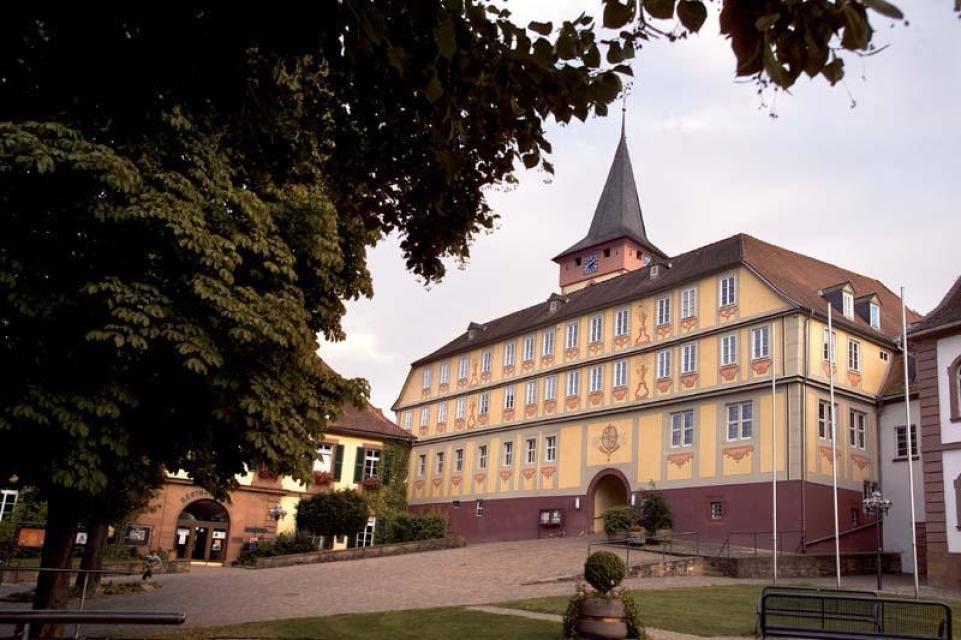 3-Länder-Radweg - Raderlebnis Odenwald, Main und Neckar