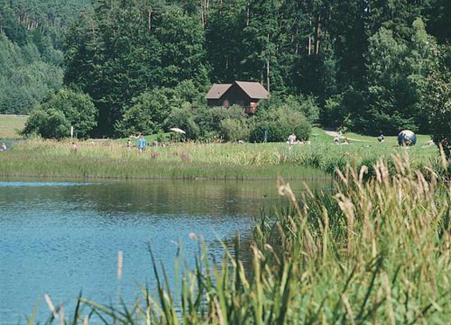 Siegfried-Radweg - Vom Himbächel-Viadukt nach Wald-Michelbach