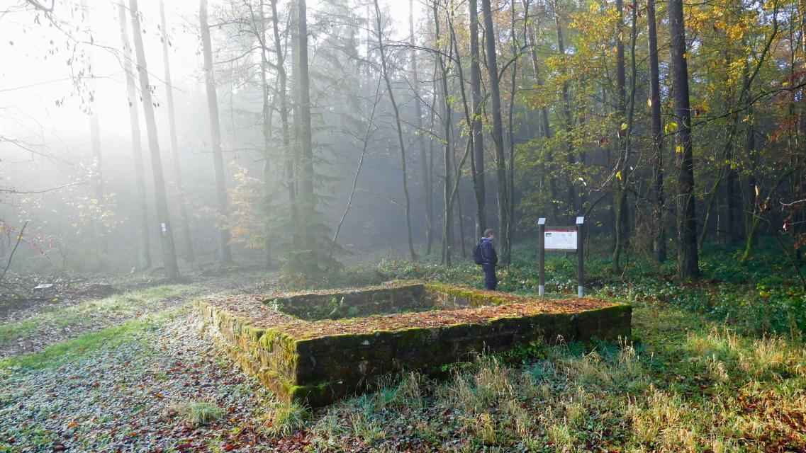 Kornelia Horn - Odenwald Tourismus GmbH