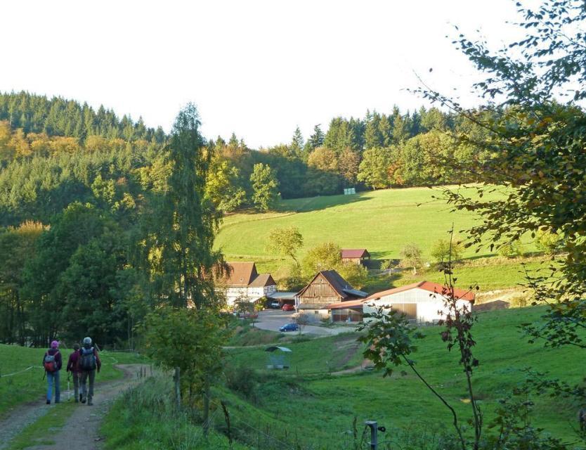 Wagenberg-Wanderung