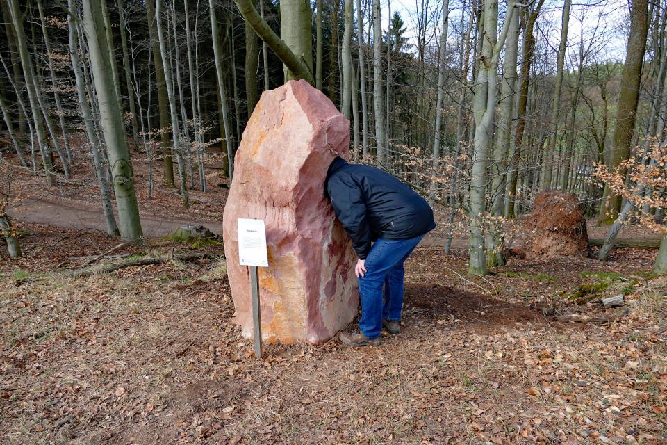 Hammelbacher Klangwanderweg - Klangerlebnis in der Natur