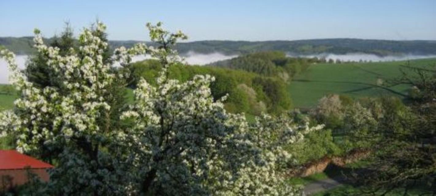 """Geopark-Pfad """"Wasserarmut in einem regenreichen Gebiet"""" - Rothenberg-Runde 1"""