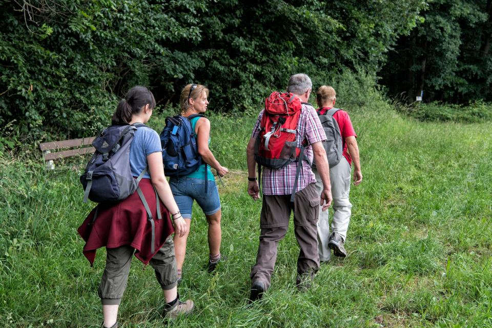 Familien-Wald-Wanderung