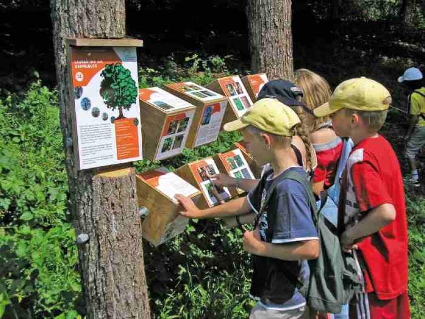 Natur- und Genusserlebnis Kappelbuck in Beyerberg
