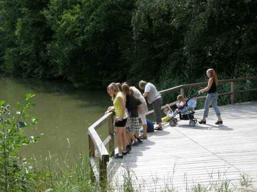 Natur- und Geschichtserlebnispfad in Reichardsroth bei Ohrenbach