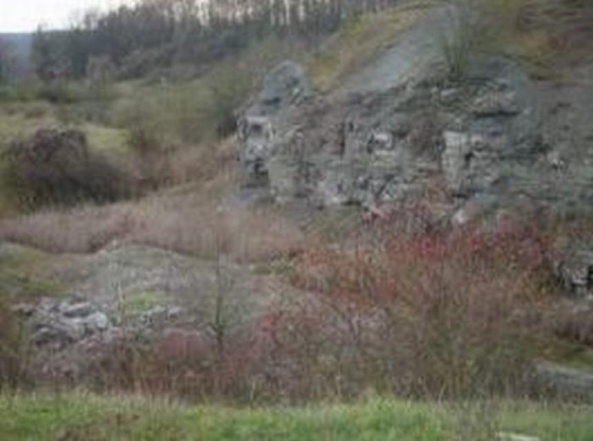 """Geotop """"Die Graue Lagune"""", Gipsbruch Endsee"""