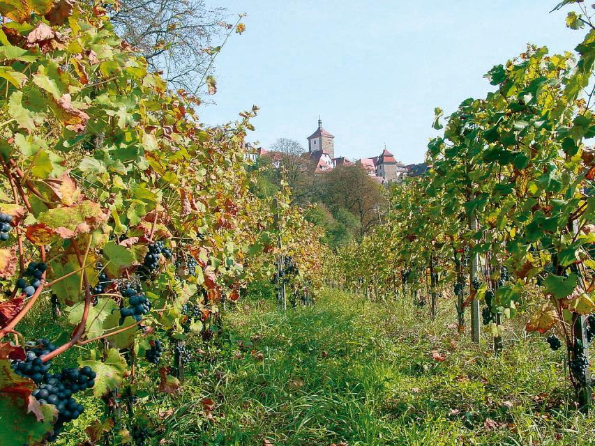 Hotel-Gasthof-Weinbau 'Glocke'
