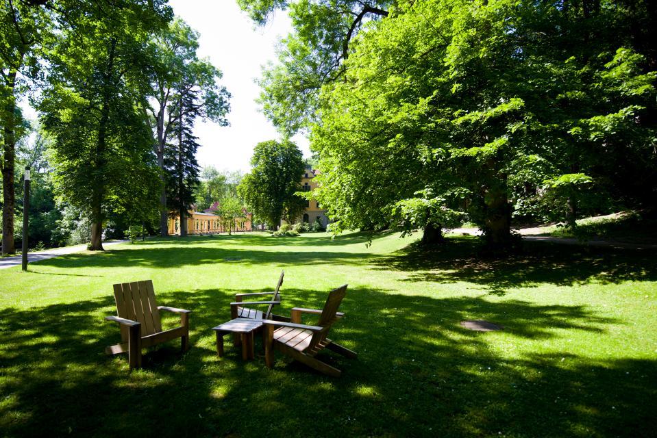 Weitläufige Parkanlage mit alten Baumbeständen und dem Ufer der Tauber - Wildbad