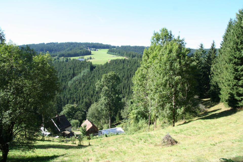 FrankenwaldSteigla Süßengut-Weg