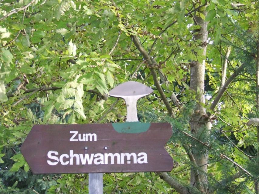 Schwamma-Pilz