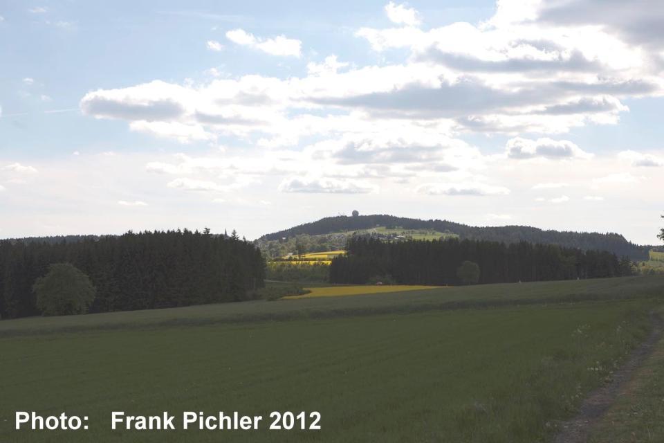 Frank Pichler 2012 -