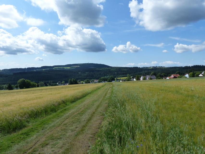 FrankenwaldSteigla Durchs Grubenholz