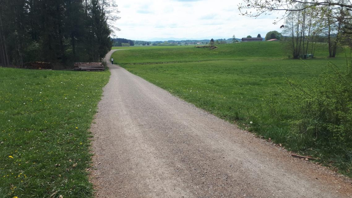Route 7: Maisinger-See-Runde