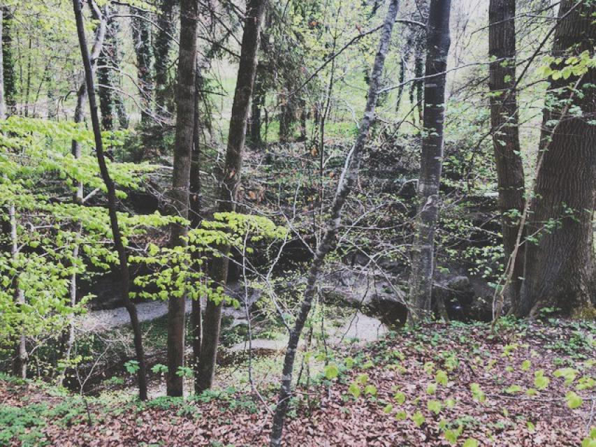 Route 10: Kreissparkassen-Tour - Rund um den Heiligen Berg Kloster Andechs