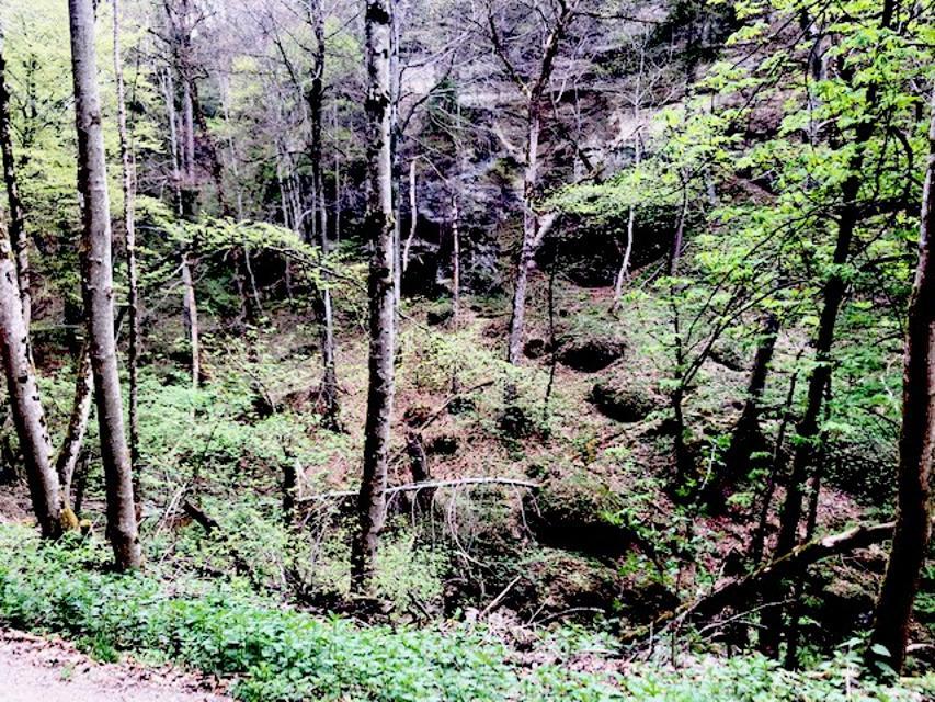Landschaft im Kiental