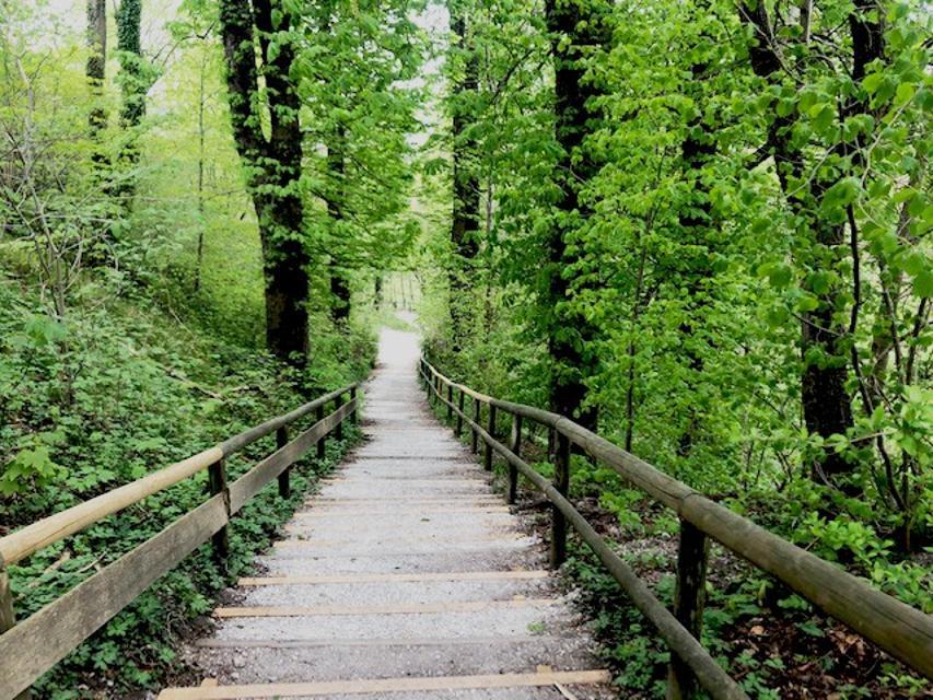 Treppen ins Kiental