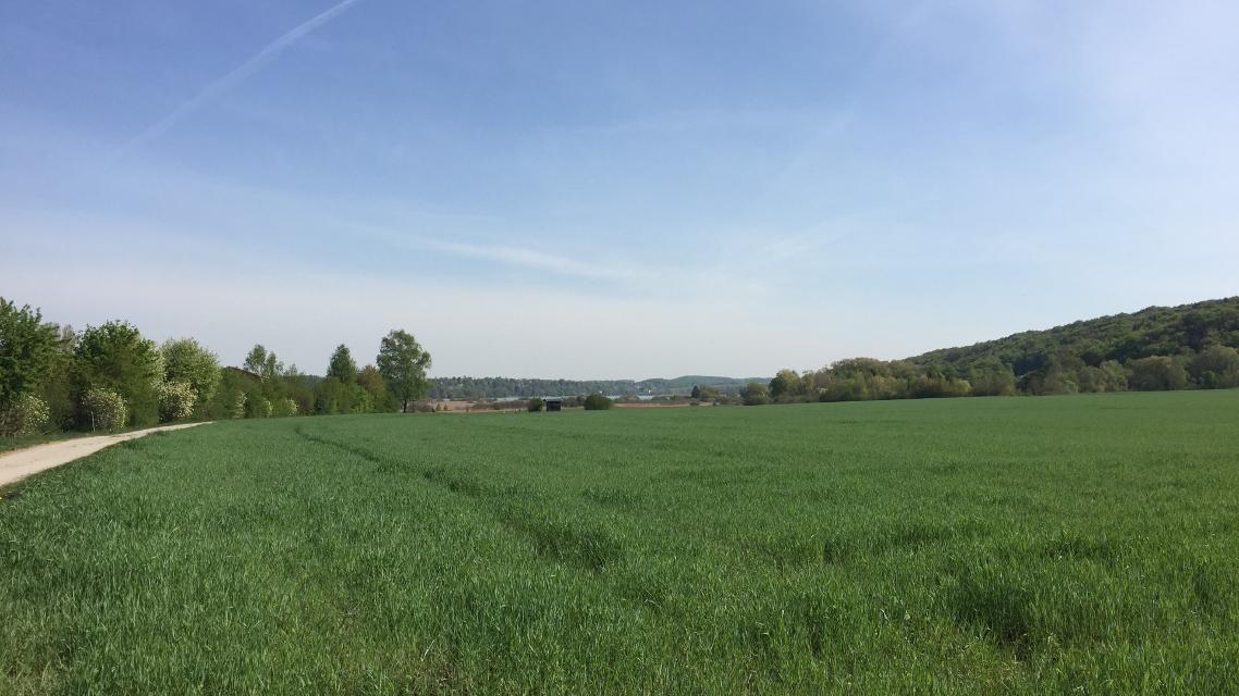 Ausblick Richtung Pilsensee