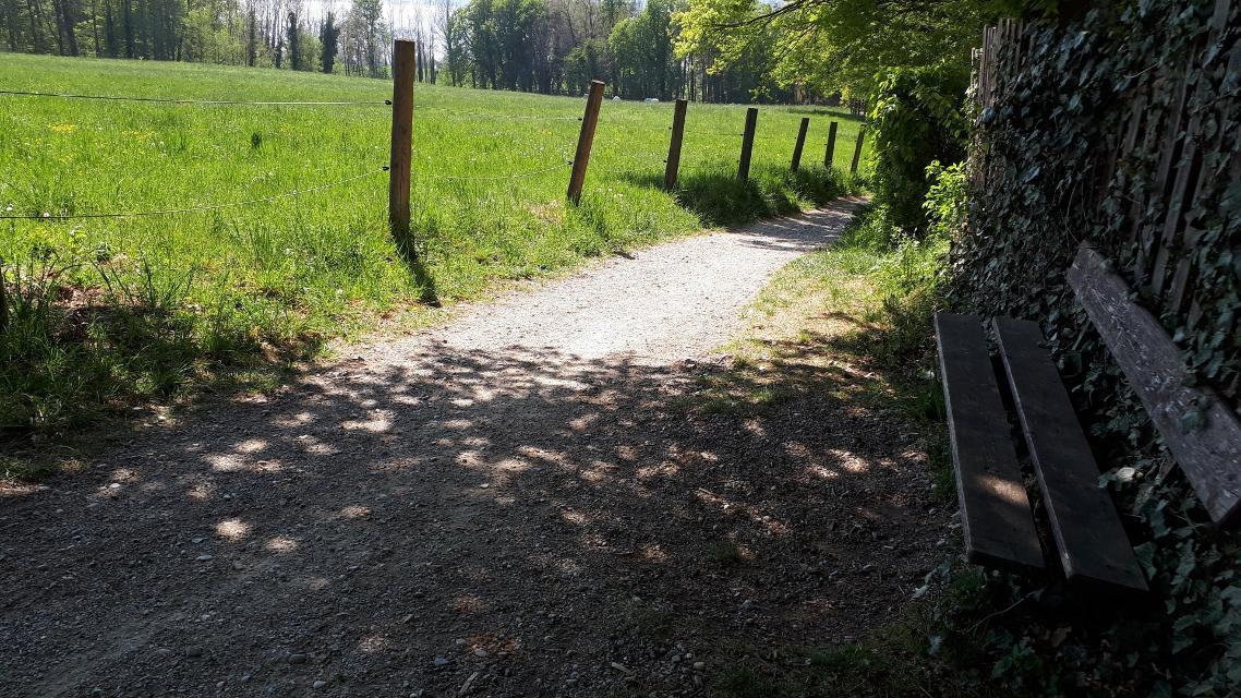Fußweg nach Stegen