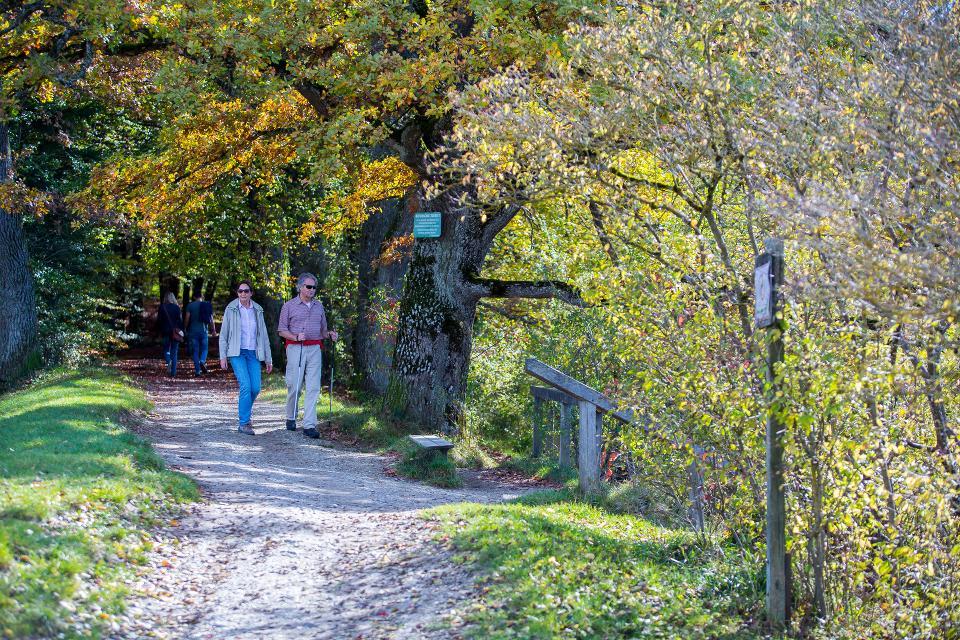 Wandern entlang des Maisinger Sees
