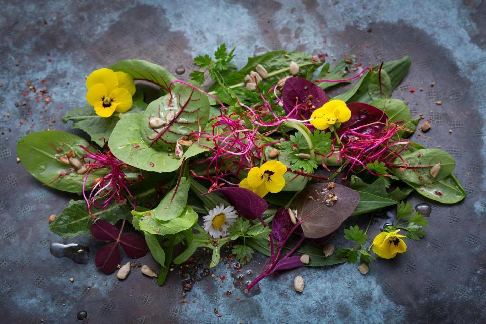 Viel Liebe im Detail: Salatteller im Restaurant des Biohotels Schlossgut Oberambach
